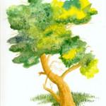 l-arbre